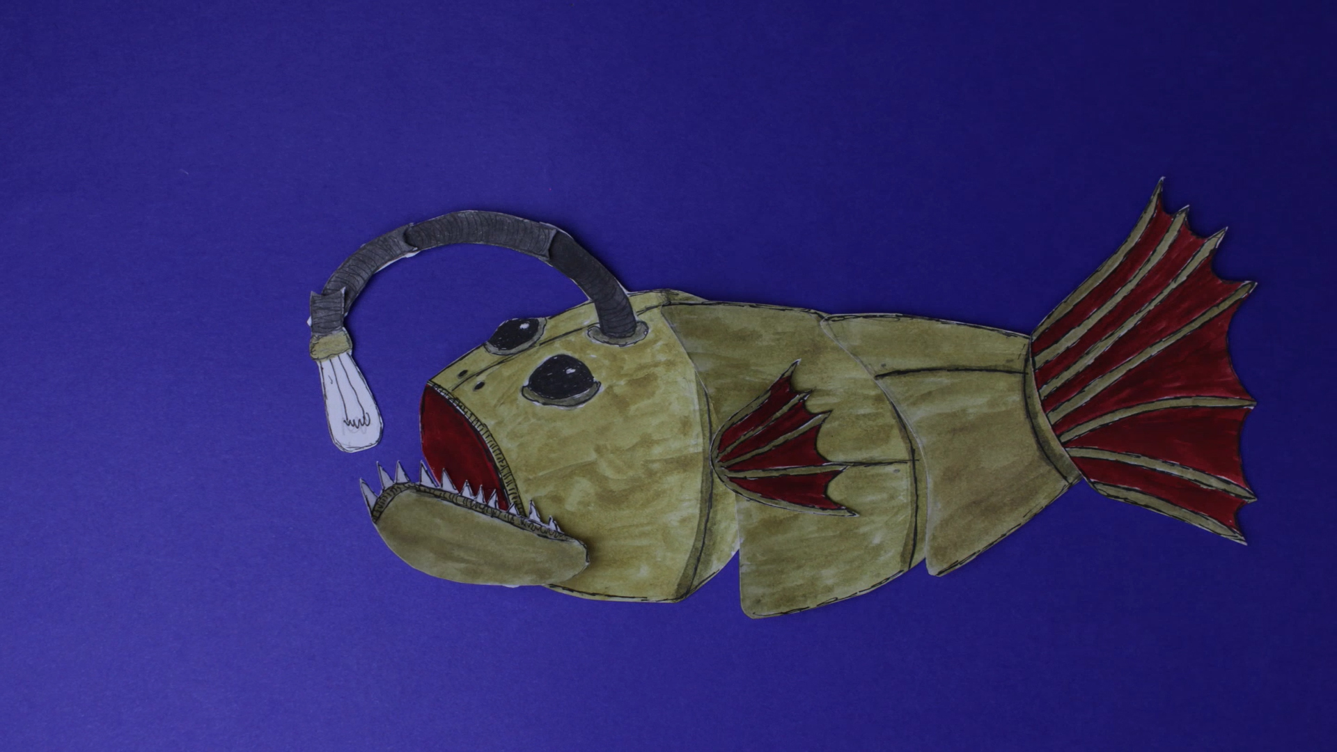ryba111